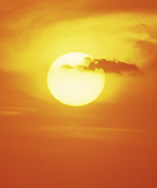 Sun exposure and skin aging